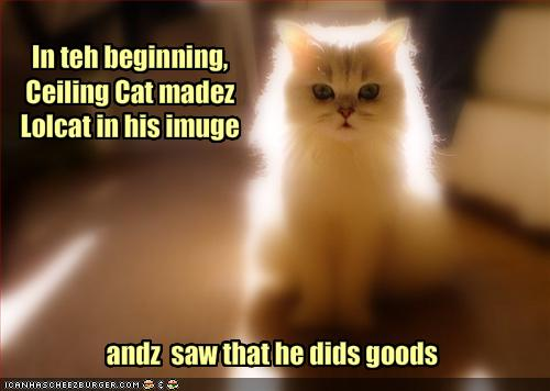 i-d5b832ee3437f4e2b77402dedfe8b755-funny-pictures-the-creation-story-of-lolcats.jpg