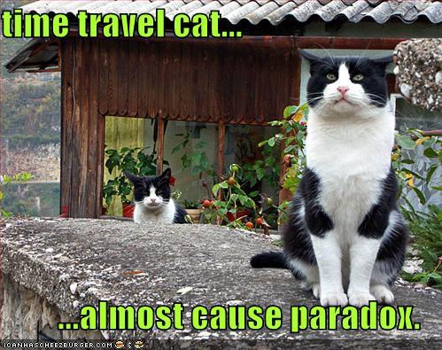 i-e27880bd78ae43aa238cbe29e57e38ac-funny-pictures-time-paradox-cats.jpg
