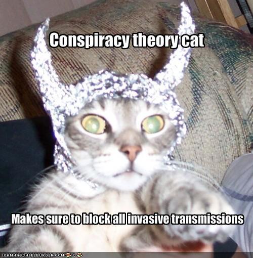 i-e328882ee44dc2a1b1dcedf7a40273ff-conspiracycat.jpg