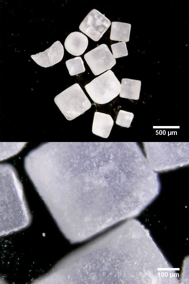 Jodsalz + Fluorid +Folsäure mit Maßstab.