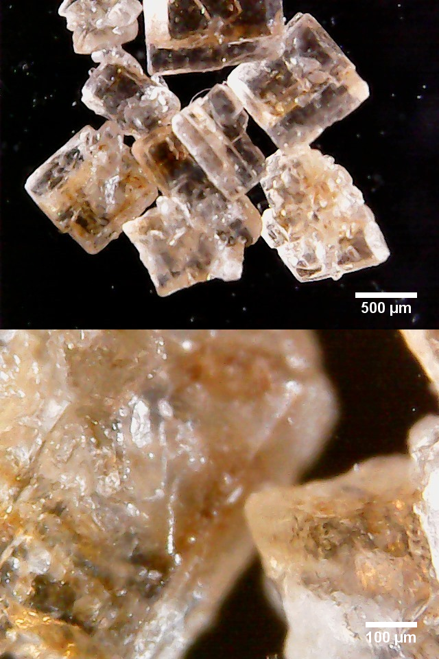 Bilder von braunem Zucker mit Maßstab.