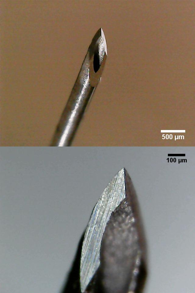 Spitze einer Kanüle mit 0,45 mm Durchmesser (26G3/8).