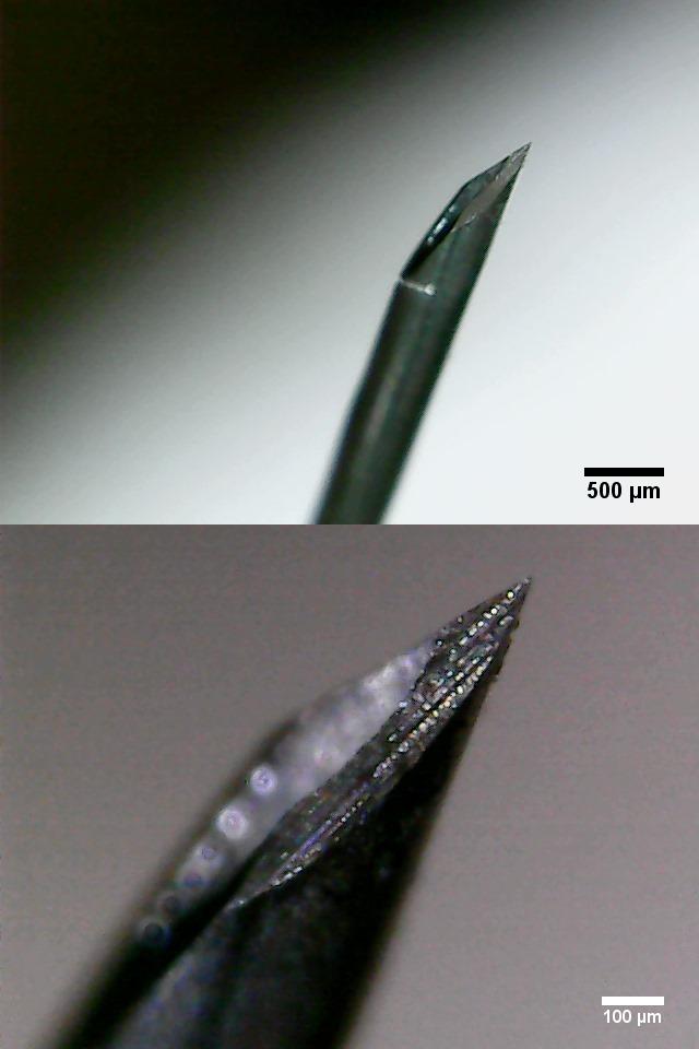 Spitze einer Kanüle mit 0,45 mm Durchmesser (26G3/8) von der Seite.