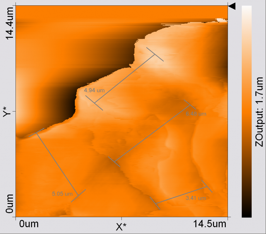 Rasterkraftmikroskop Aufnahme eines meiner Barthaare von 2004.