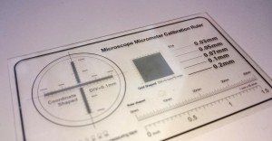 """Microscope Micrometer Calibration Ruler"" - diese Folie lag bei meinem ersten, günstigen USB-Mikroskop bei (siehe dos and donts)."