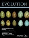 Evolution-65_7.jpg