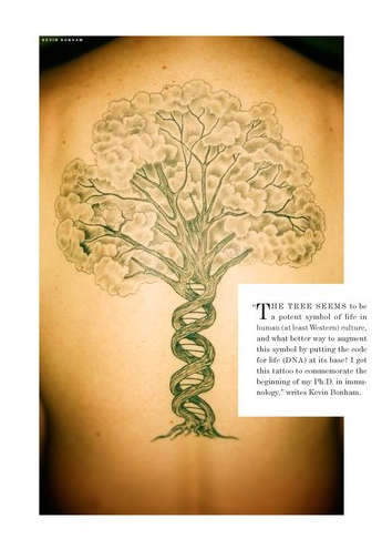 tree of dna.png