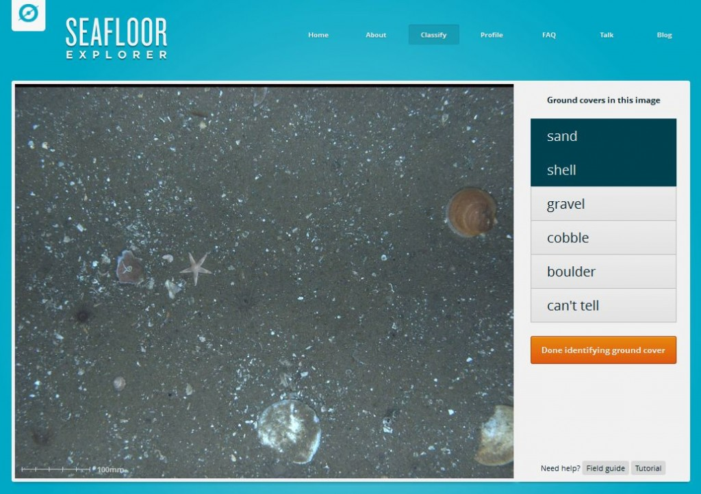 SeafloorExplorer Screenshot 01