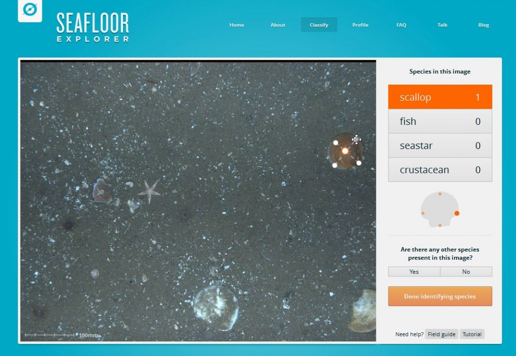 SeafloorExplorer Screenshot 02