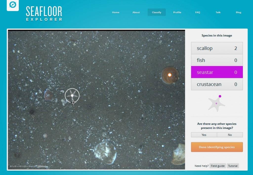 SeafloorExplorer Screenshot 03