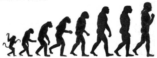 i-41d7c3224f740e9afe6a857d9aa93968-800px-Darwin-chart-thumb-550x204.png
