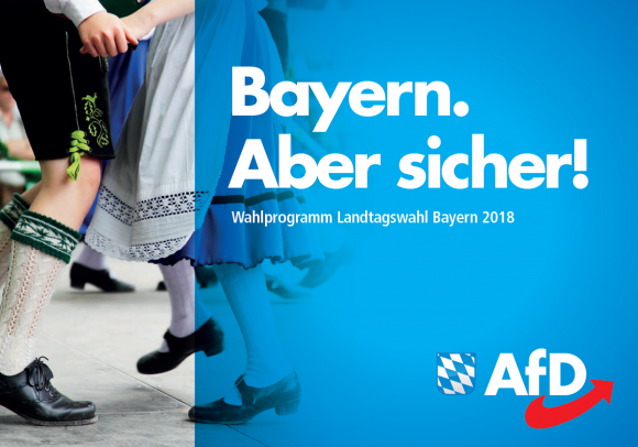 AfD-Wahlprogramm