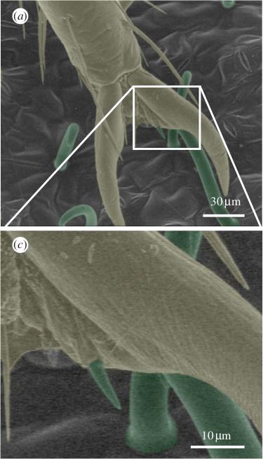 metallische bindung einfach erklärt
