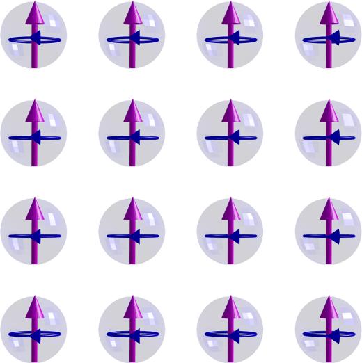 ferromagnetFieldThermal-2d