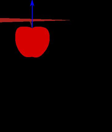 einsteinApfel1a