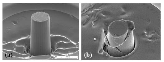i-0a7d10f5c2ae263b324f21644cfe594f-micropillar.jpg