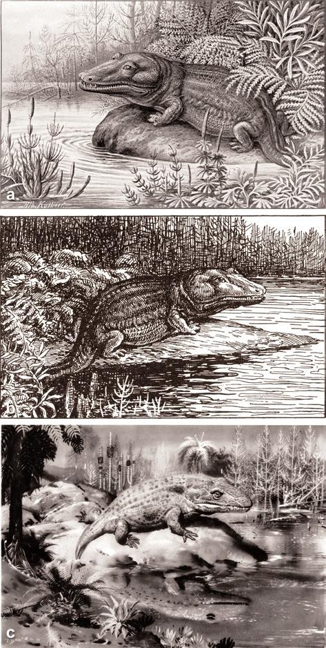 i-38909edea1a7b90f4e52b3b60fea2c40-mastodonsauruskelber_2009_lebensbilder-004.jpg