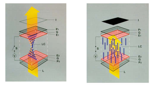 i-d29a0260efdc36d4b588c4c56bc8f5ac-TN-LCD-schematic-MS-208kB-thumb-512x288.png
