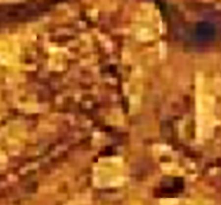 i-e348b338d67dda2b90efcf62b52db1e6-homosaurusJaw1.jpg