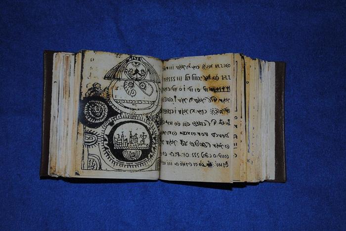 Codex-Rhonci-01