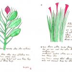 00012-Ricardus-Manuscript