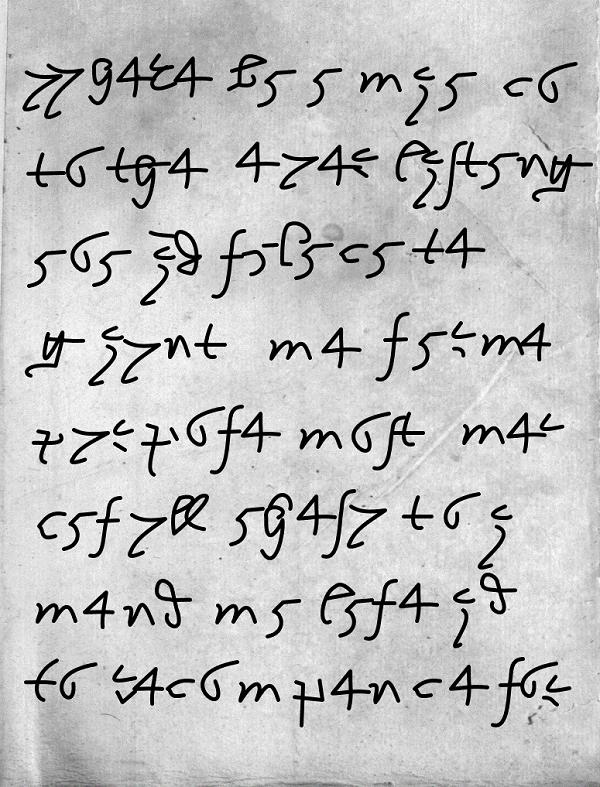 Codex-Igo
