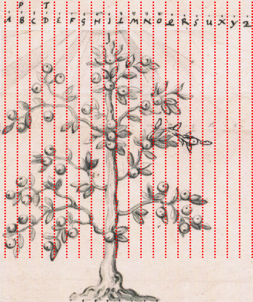 Semagramm-Tree-Solution