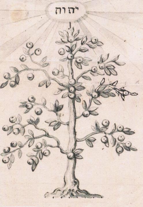 Semagramm-Tree