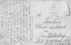 Postcard-Edelweiss