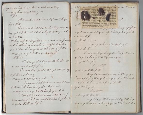 Lane-Manuscript-bar