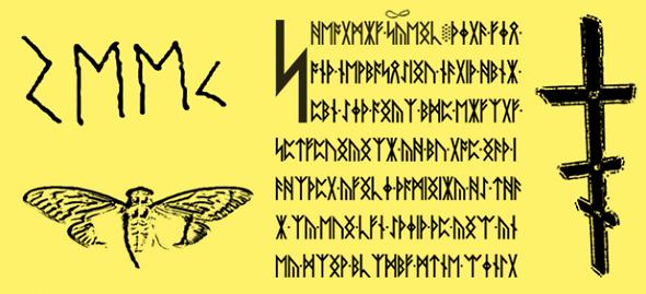 Cicada-2016-2-bar