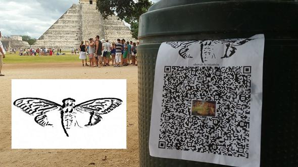 Cicada-Mexico-bar