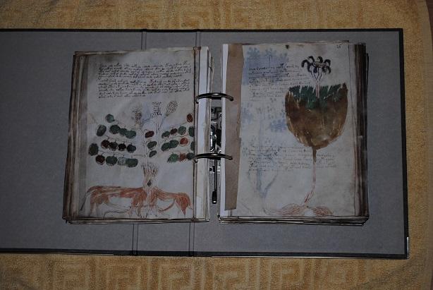 Voynich-facsimile-06