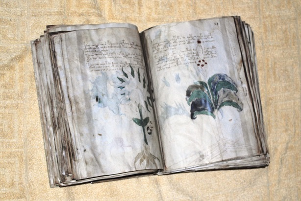 Voynich-facsimile-07