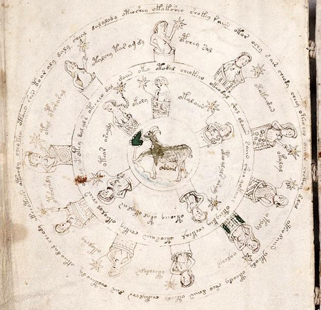 Voynich-Aries