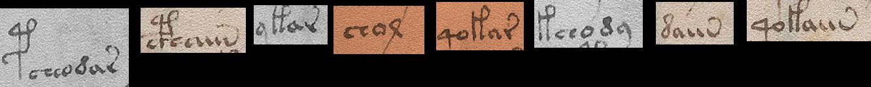 Voynich-Challenge-C06