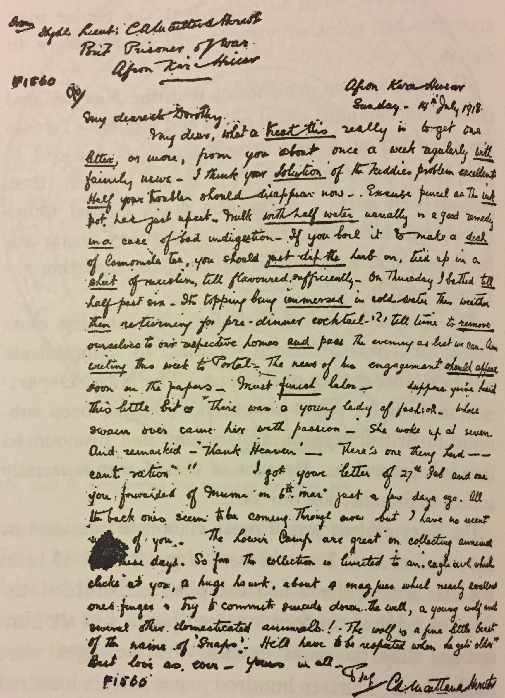 Yardley-Stegano-Letter