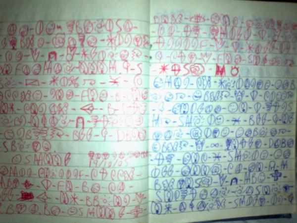 Diary-Manic-Fuzz