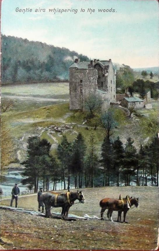 Postcard-Wood-pic