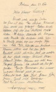 Niederlustadt-Letter-3