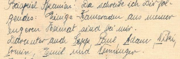Niederlustadt-Letter-5