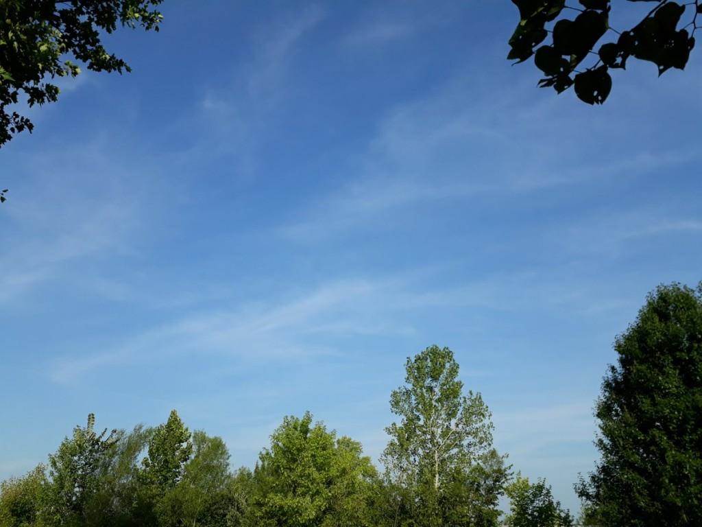 Himmel über Darwins Haus