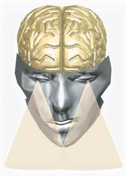 i-d20d15853cf5e79742f85cc3a5a50a0a-brainvisions.jpg