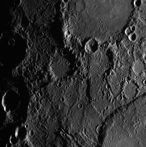 i-a9dea1ad5c0dbc012a0137c71fadfa0a-mercury_beagle_rupus-thumb-300x301.jpg
