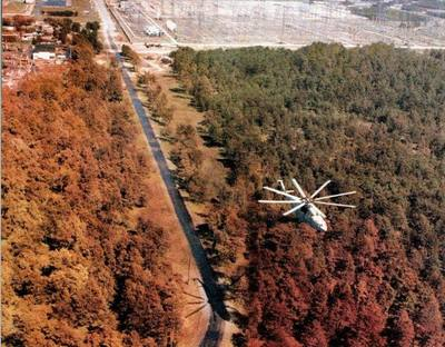 i-652a7e65ed072218c4febccb42818a5d-Red_Forest__Chernobyl__by_Etlau.jpg
