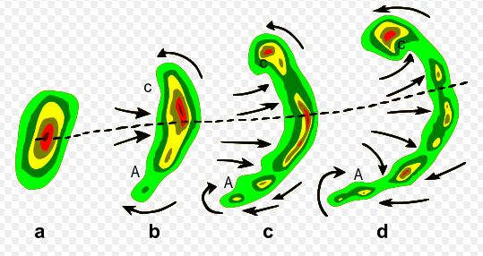 i-e8e422cb1c566377258917c33a539daa-542px-Bow_echo_diagram.PNG