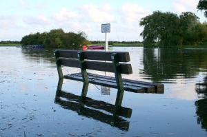 i-64b5d646035c5e959ddd24398efe601d-832365_bench_underwater.jpg
