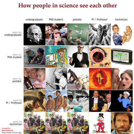 how people in sciene see each other.jpg